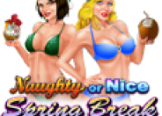 Naughty or Nice - Spring Break logo