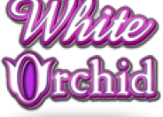 White Orchid logo