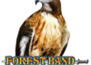 Forest Band logo