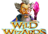 Wild Wizards logo