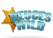 Deuces Wild 4 Line Video Poker logo